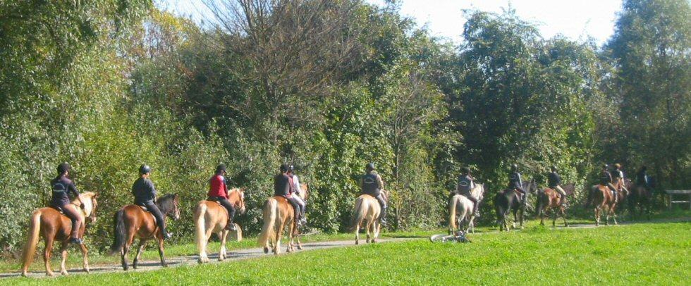 Urlaub Pferdehof Pfaffenriegel
