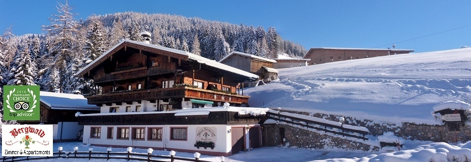 Holidays ALPBACH *** Pension *** BERGWALD