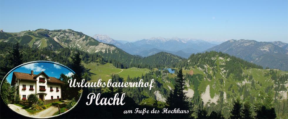 Urlaub Biobauernhof Plachl