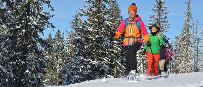 Waldness im Almtal Salzkammergut Schneeschuhwandern - Pension Wanderruh Gruenau im Almtal