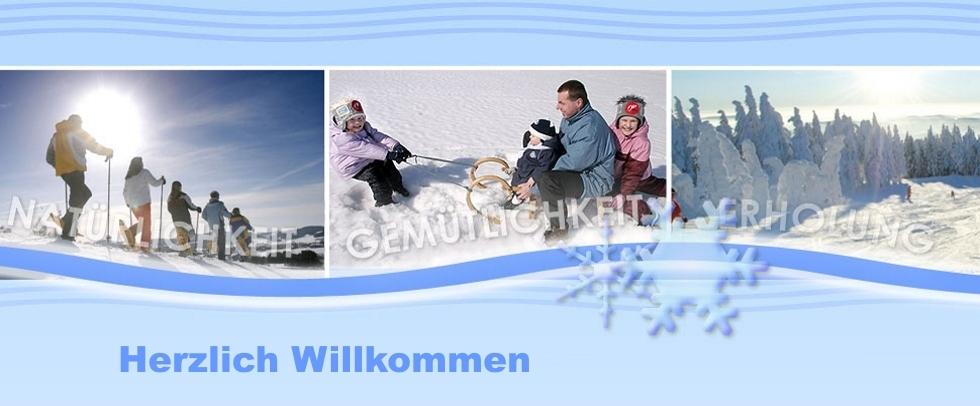 vakantie Wintersport allgemein