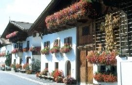 traditional farms with flowers - Mutters Tirol