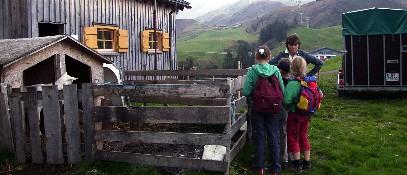 Michls Sennhütte - Damuels Vorarlberg