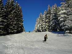 Skigebiet Hochbaerneck - St. Anton a. d. Jeßnitz Niederoesterreich