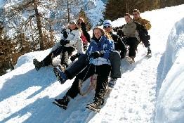 Elfer - Neustift  im  Stubaital Tirol