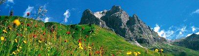 Vorarlberg: Aufgespürt - Vorarlberg