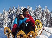 snowshoe hiking in Oberösterreich - Austria Superioara