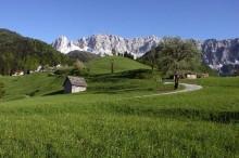 Carnica-Rosental