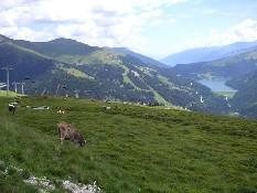 Zell am Ziller, Zillertal Arena Tirol