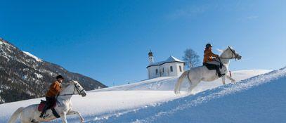 Lipizzanergestüt - Achenkirch am Achensee Tirol