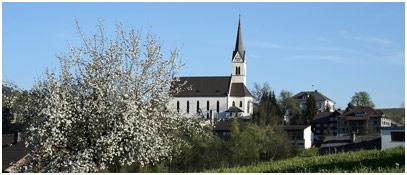 EGG - IM HERZEN DES BREGENZERWALDES Homepage Image # - Egg Vorarlberg