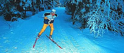 Cross-Country Skiing - Altenmarkt-Zauchensee Salzburg