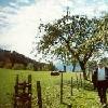 Hochplateau Hochreit - Goestling Niederoesterreich