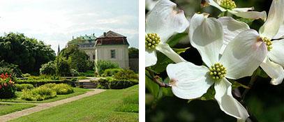 """""""Botanischer Garten"""" © univie.ac.at - 3. Bezirk - Landstraße Wien"""