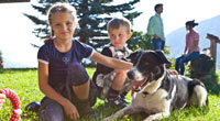 Haustiere erlaubt - Animali permessi