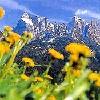 Sciliar-Alpe di Siusi/Schlerngebiet-Seiser Alm